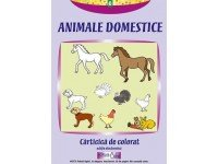 Animale domestice - carticica de colorat (E-book)